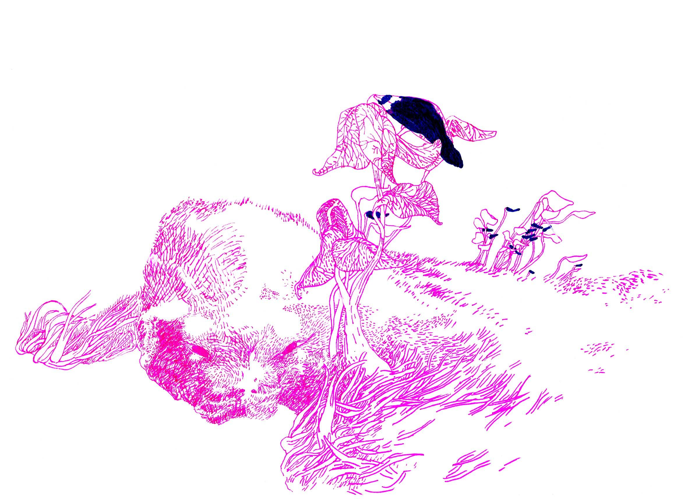 31f49b29eb6 Paysage (Sarah Debove) - L Improbable ImproBlog d Emmanuel Savoye ...